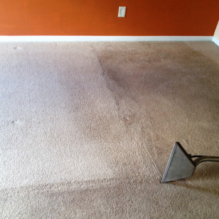 Carpet Cleaning in Jacksonville, FL