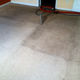 Steam Carpet Cleaning in Jacksonville, FL