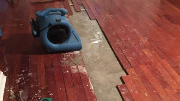 Water Damage Restoration in Jacksonville, FL